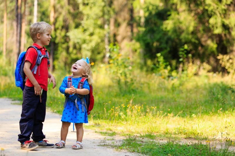 Como a fibra ótica tem modernizado escolas rurais
